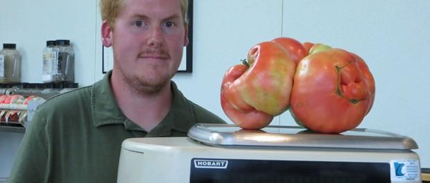 Огород порадовал американца гигантским томатом