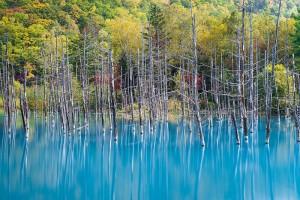 Голубой пруд на острове Хоккайдо2