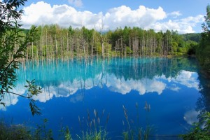 Голубой пруд на острове Хоккайдо3