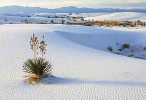Пустыня Белых Песков - Фарфоровая пустыня4