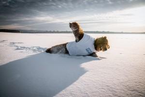 Сибирский-креатив01