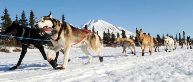 Самые счастливые американцы живут на Аляске