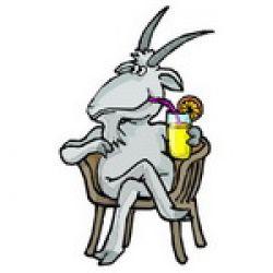 Позитивное видео — коза против кресла