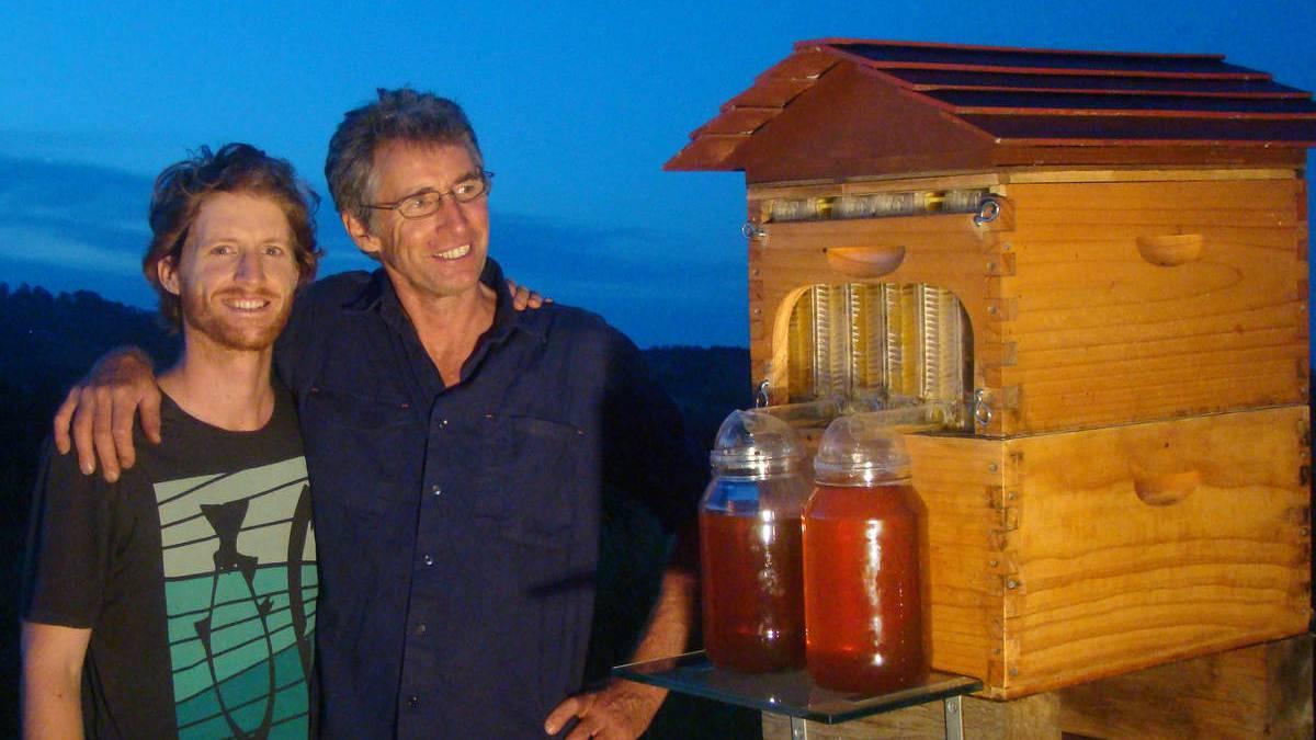 Мед - это хорошо и полезно