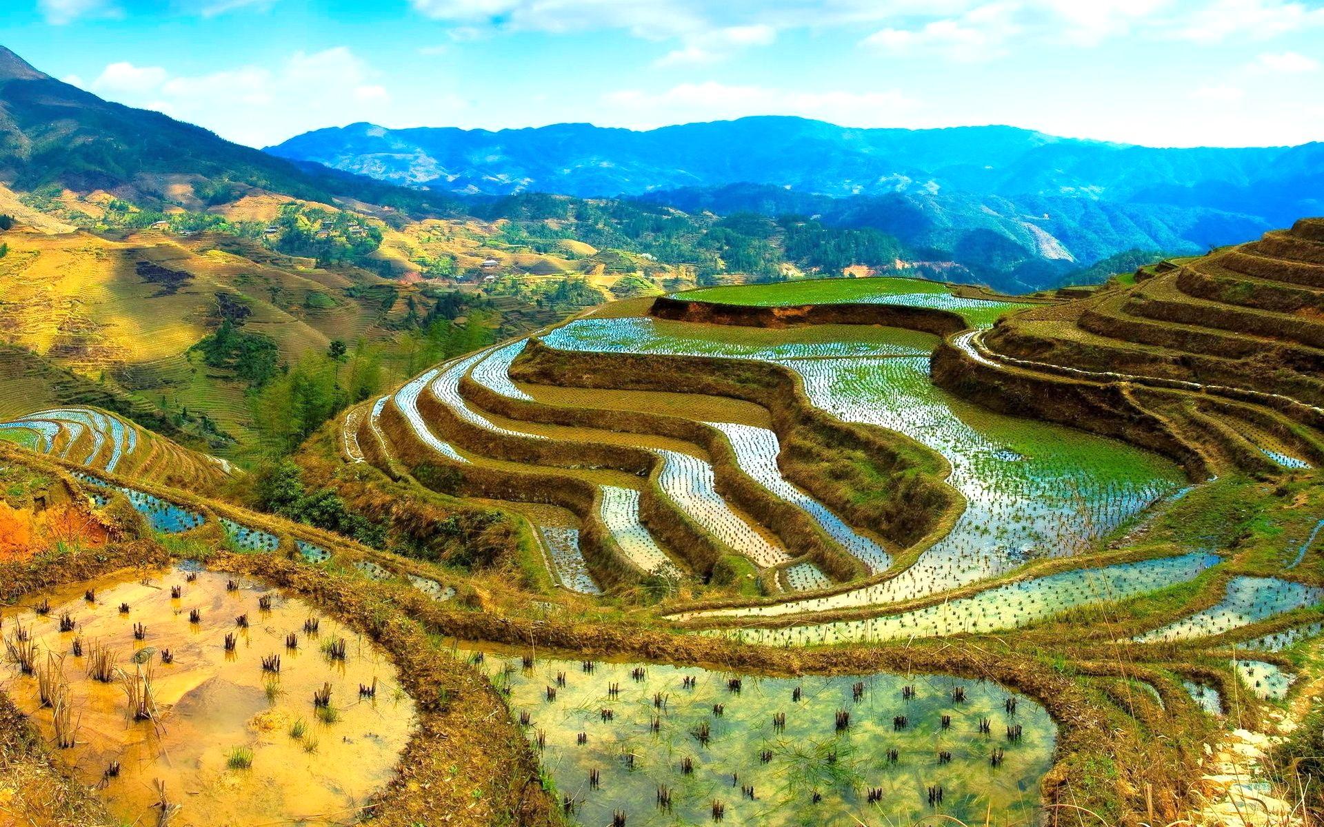 необыкновенное чудо рисовые террасы