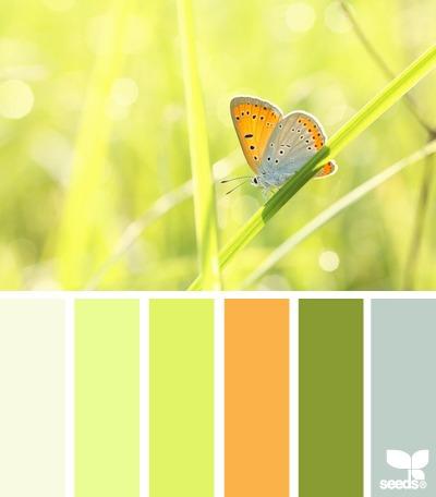 Где найти цвета медовой росы и увидеть цвет светлой мальвы подскажет новый колдунщик цветов