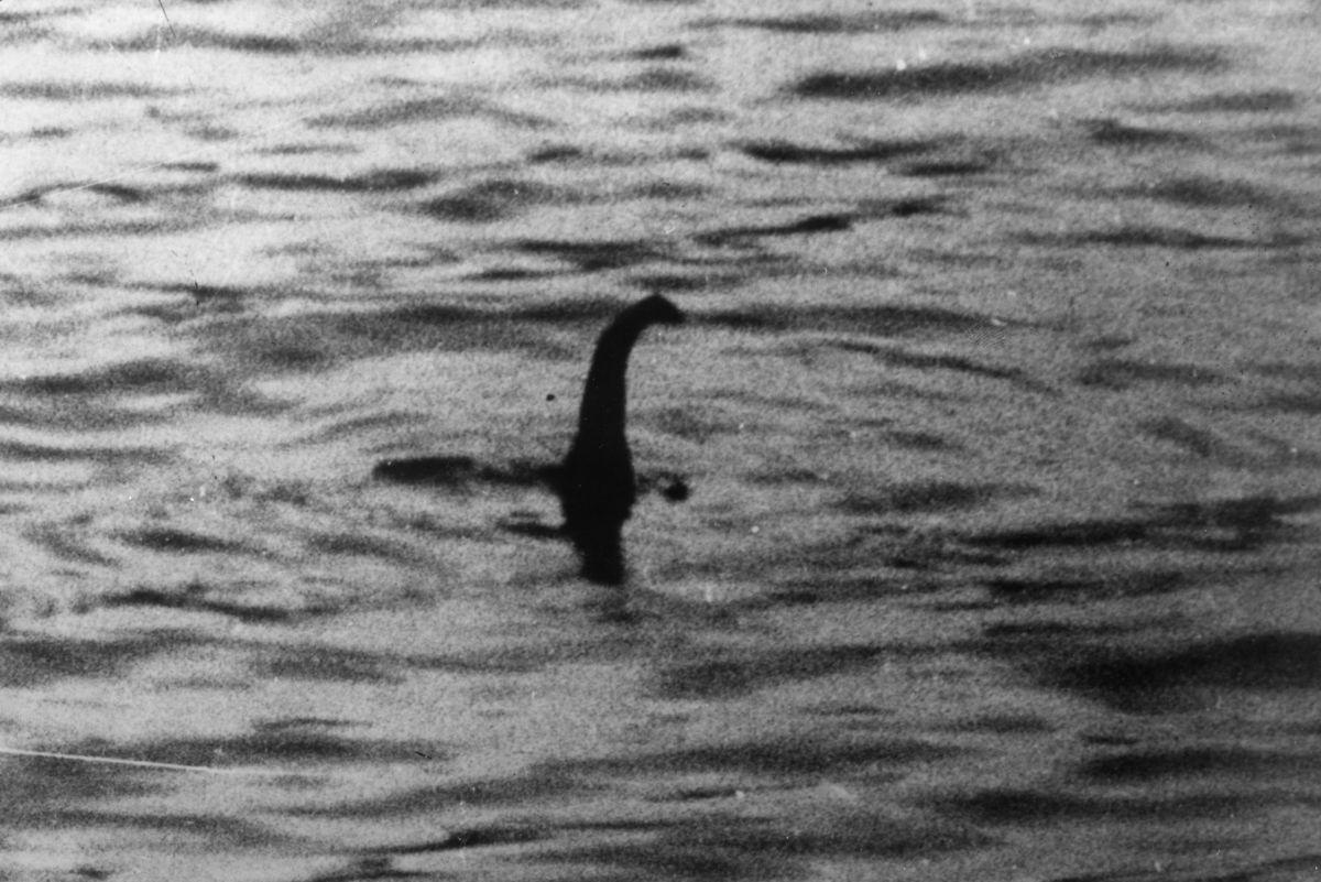 Тайна лохнесского чудовища
