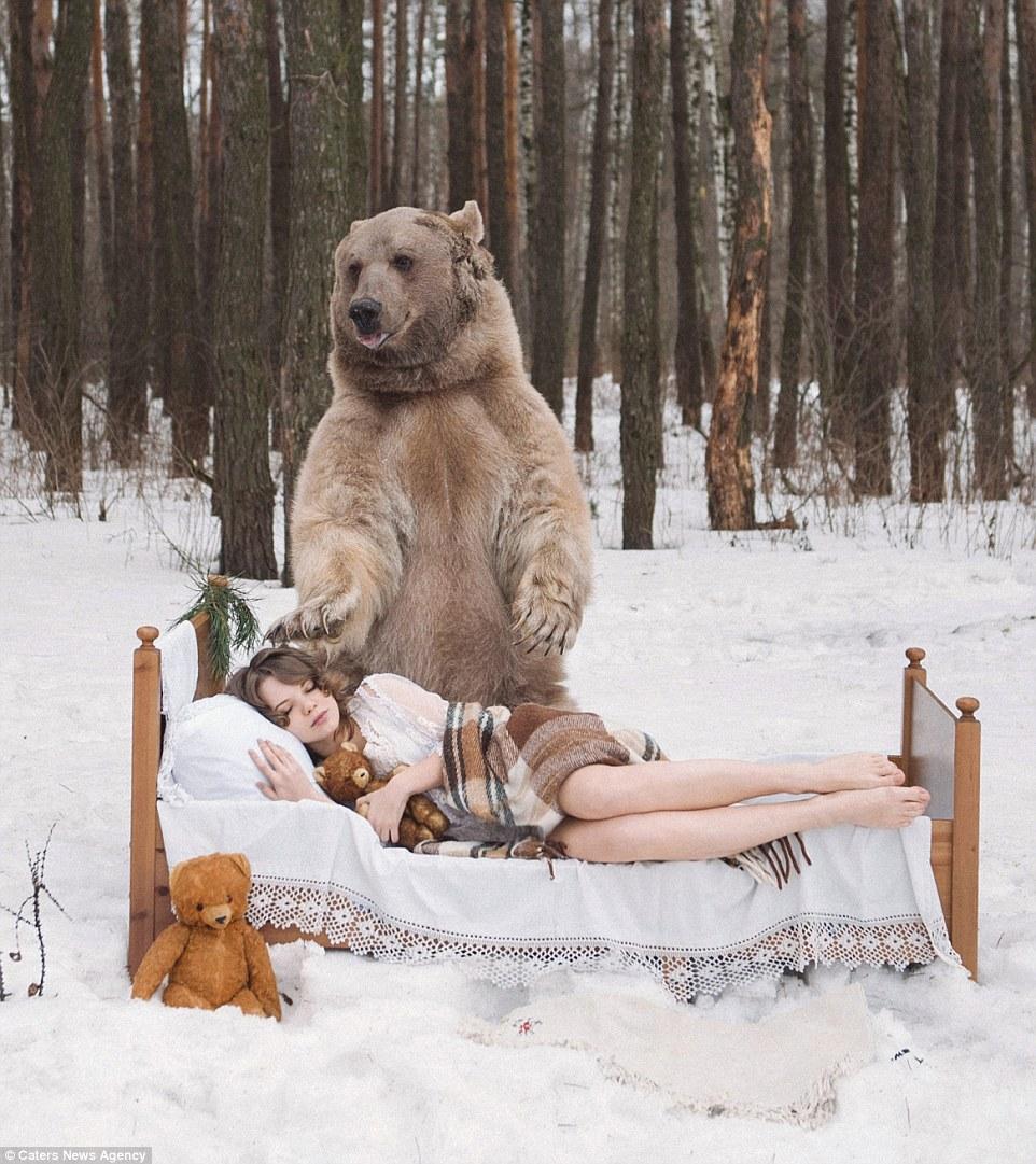 Фотосессия медведя