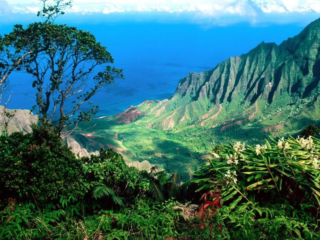 Остров Мауи02