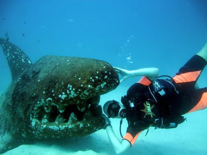 Подводный дайвинг на Ка Тао