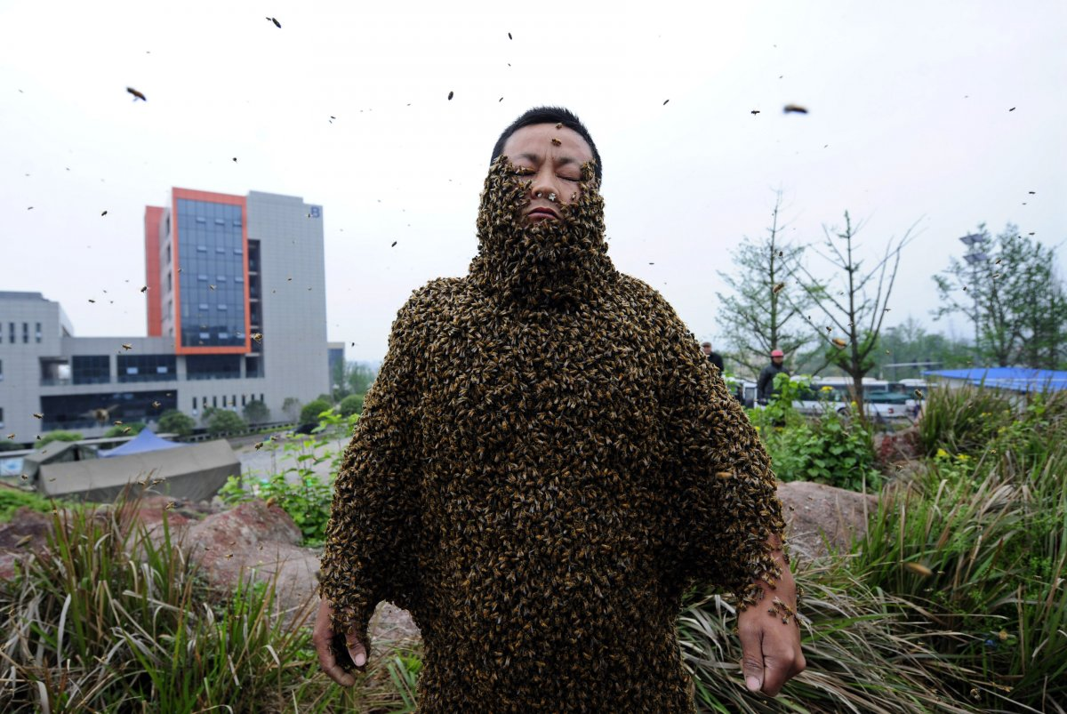 Забавный рекорд из книги рекордов гиннесса - много пчел