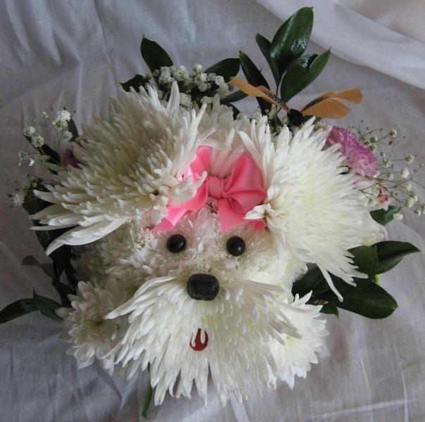 собака из цветов