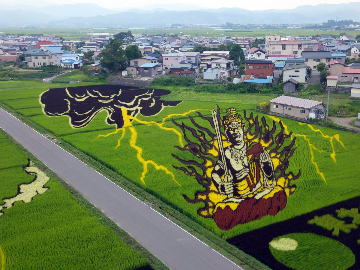 картины из риса