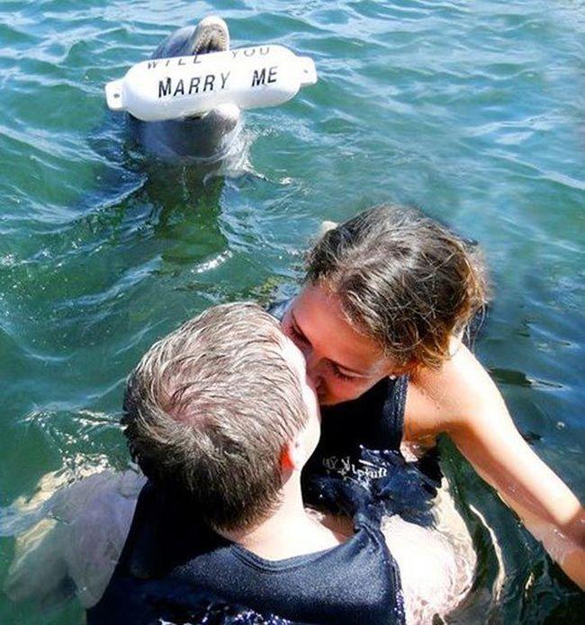 позитивно предложил выйти замуж