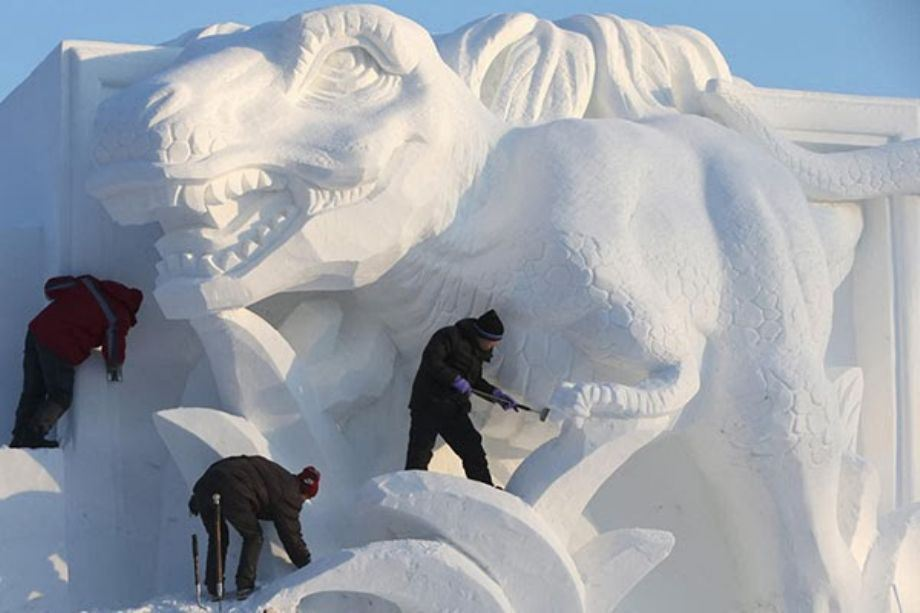 ice-sculpture26