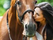 лошади любят улыбки