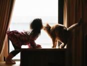 разговор по душам с котом