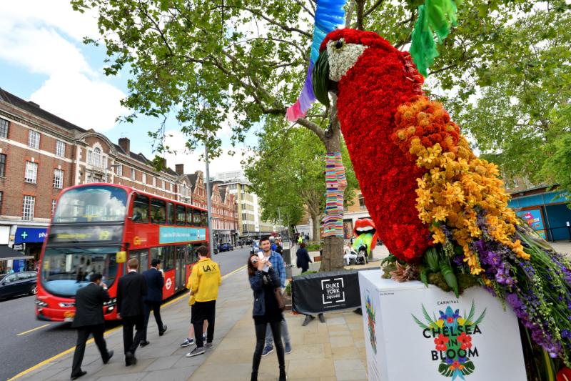 Chelsea Flower Show 2016-20
