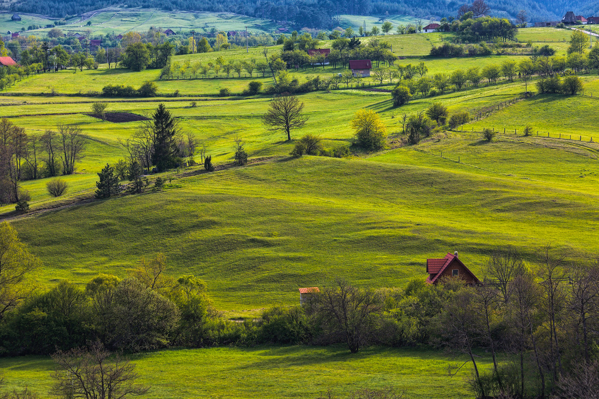 Зеленая красота сербской глубинки