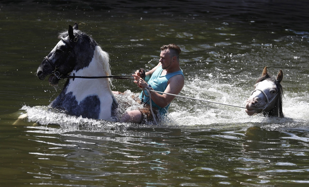 Members of the traveller community wash their horses in the river Eden during the horse fair in Appleby-in-Westmorland, northern Britain.