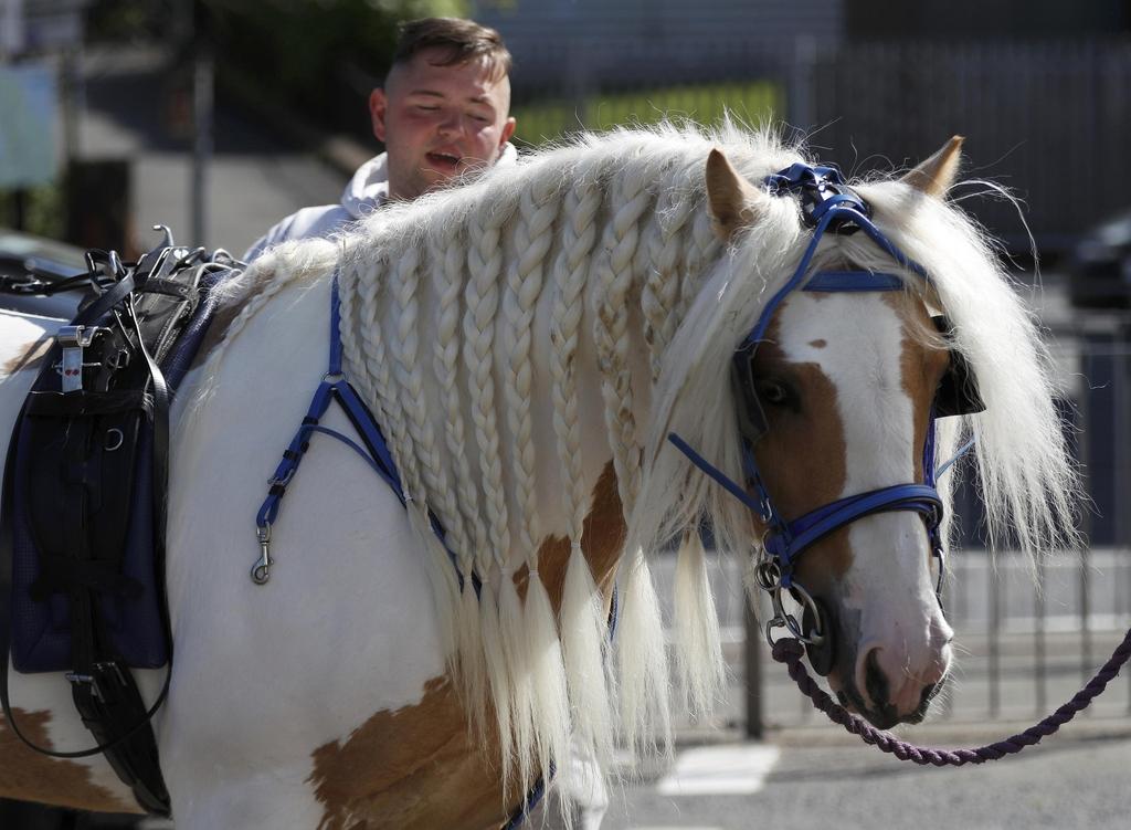 супер лошадиное шоу на Эпплби Хорс