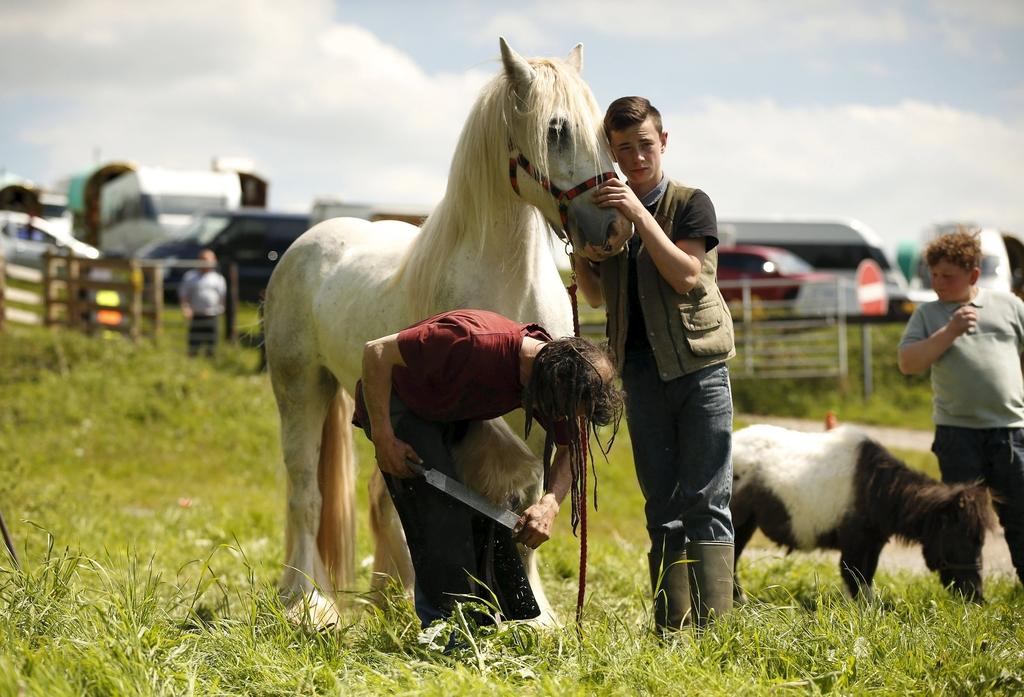 A traveller holds his horse as a blacksmith works on its feet at Appleby-in-Westmorland