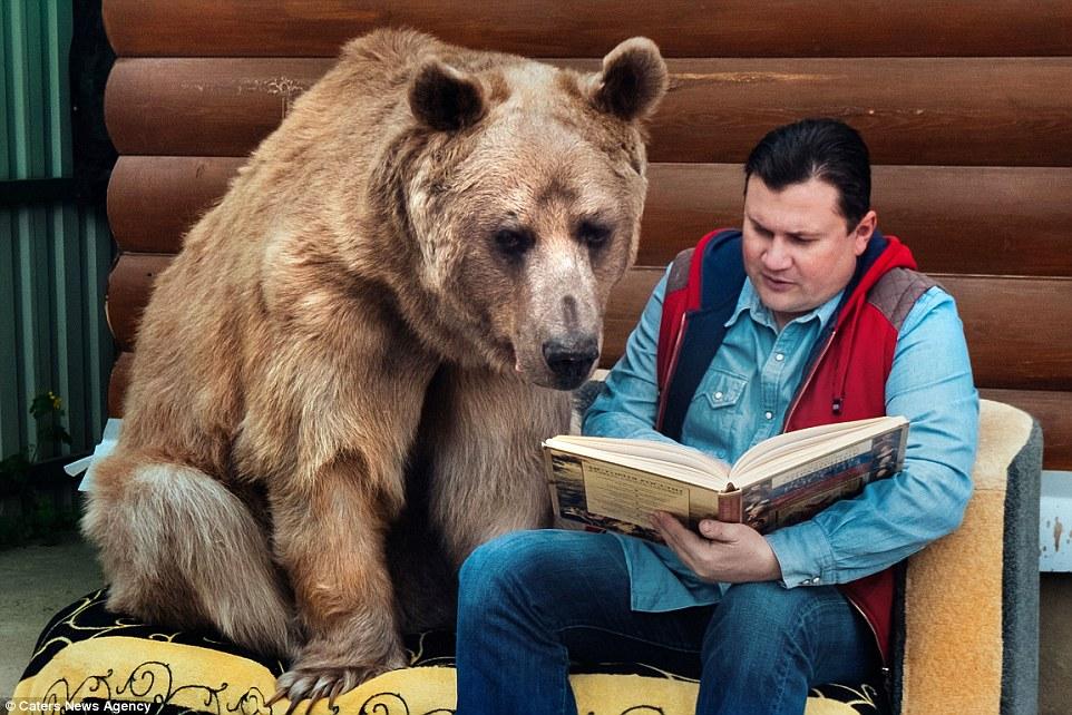 семья воспитывает медведя