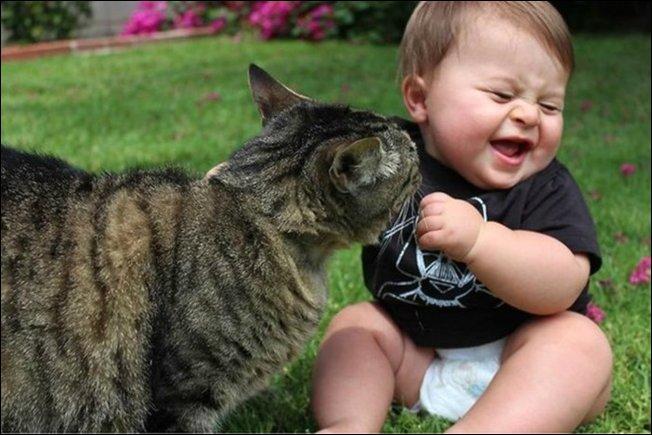 cat-child2