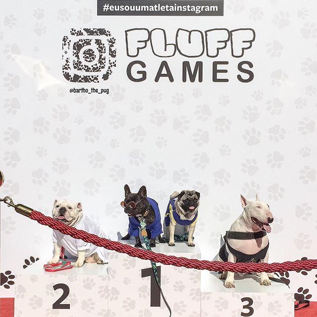 fluffgames12