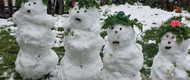 Снеговик слепить летом уже не проблема