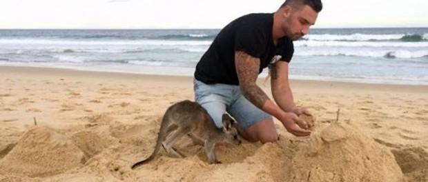 Позитивная дружба по-австралийски