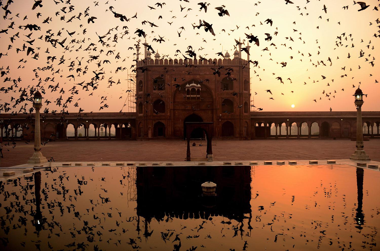 Чарующий восход в Нью-Дели