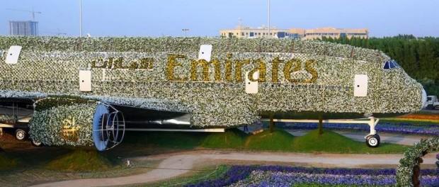 В Дубаи появился самый большой в мире цветочный самолет