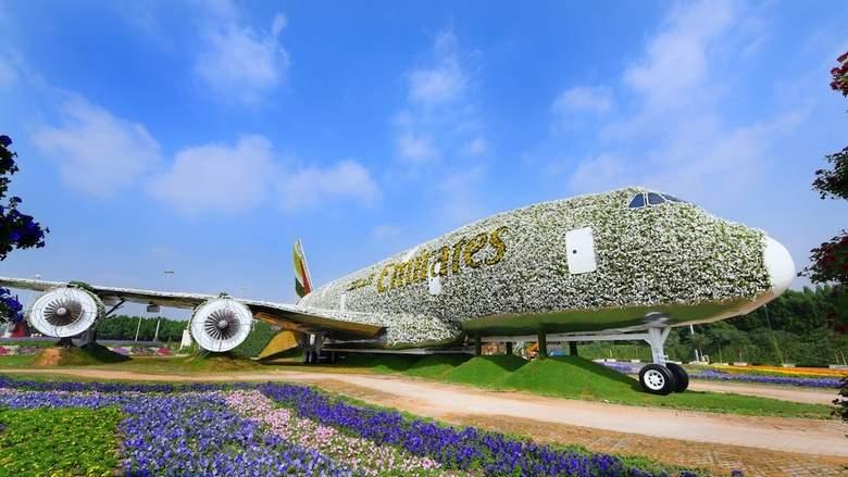 цветочный самолет Airbus A380