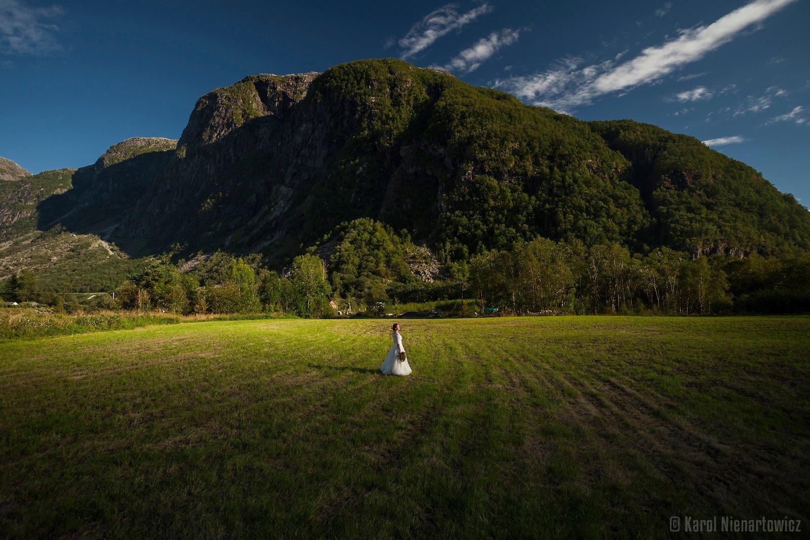 природа - свадебный фотоальбом от чеха