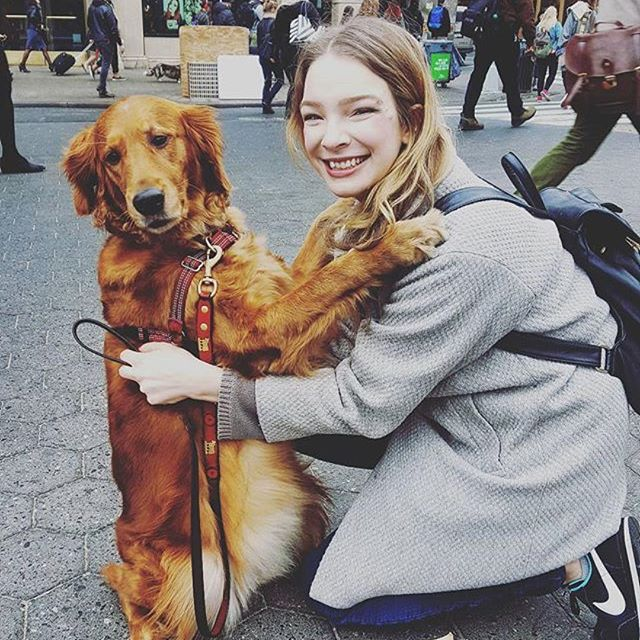пес обнимашка из Нью-Йорка