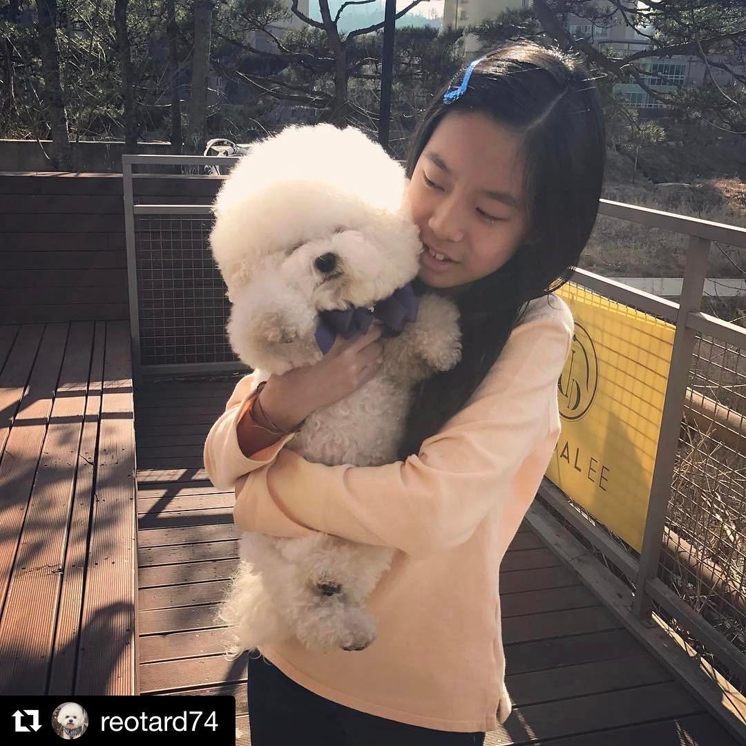 puppi-dog10