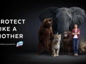 Lysol_Protect_Like a Mother2