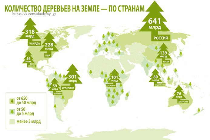 Карта лесов