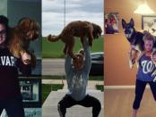 ЗОЖ с собаками