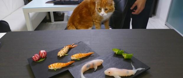 Позитивная еда – японец порадовал своих питомцев необычными суши