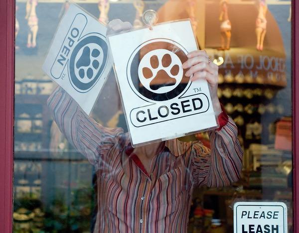Bears interrupt shopping in Aspen2