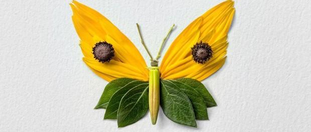 Изысканная красота цветочных насекомых от Раку Иноуэ