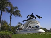 Orlando Sea World 1