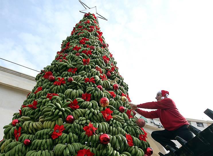 В Ливане соорудили самую вкусную елку в мире