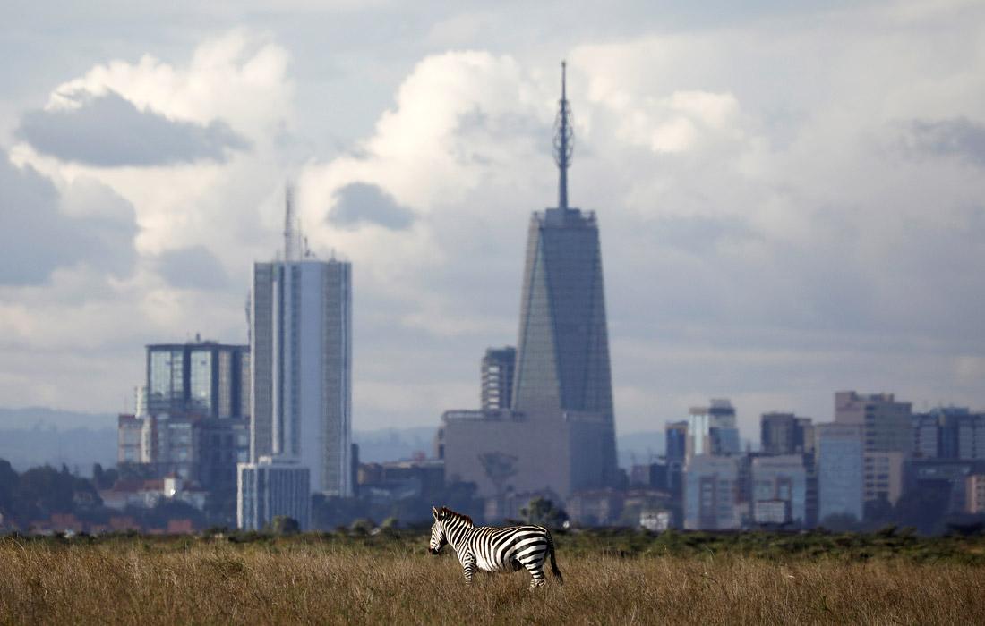 Природная цивилизация -вблизи Найроби