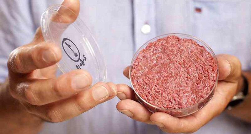 Искусственное мясо1