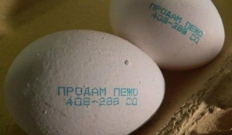 уральский креатив в яйце