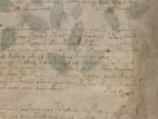манускрипт Войнича4