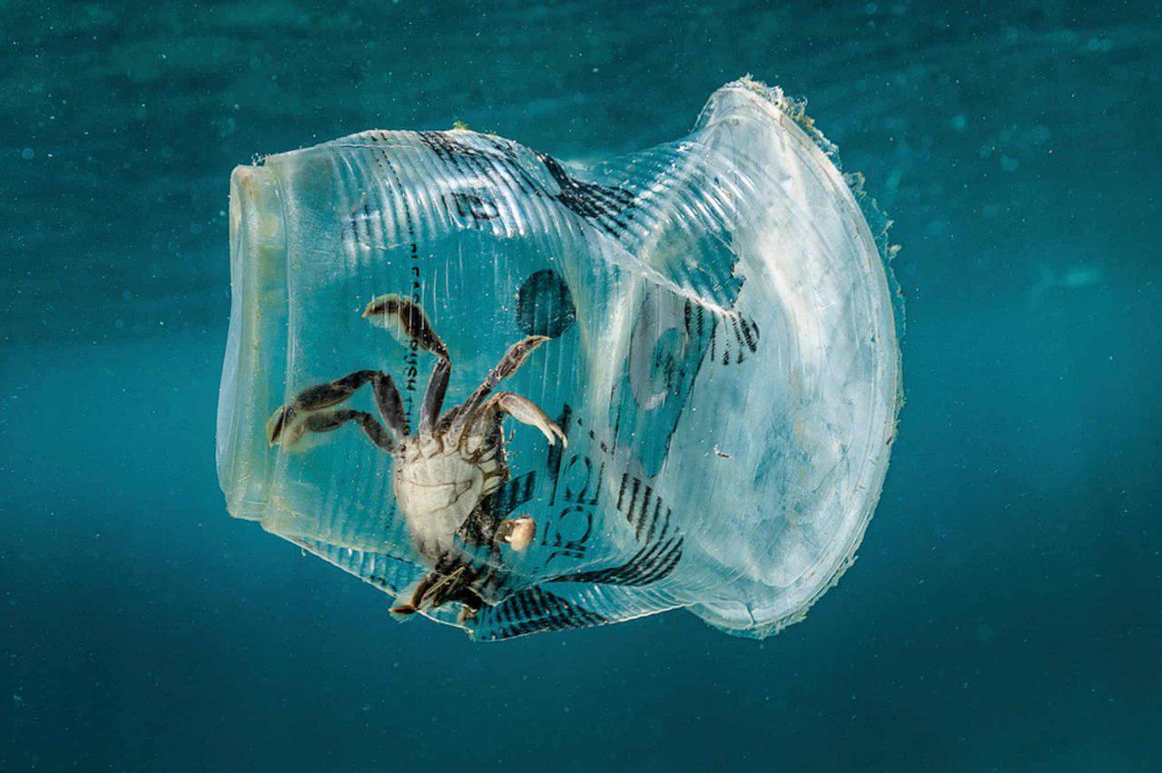 пластик менее вреден природе